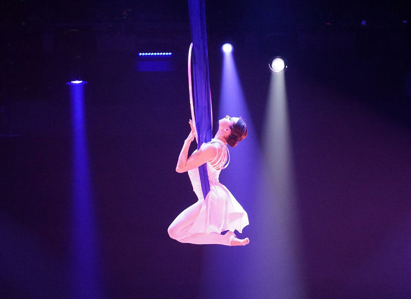 event entertainment circus gymnastics
